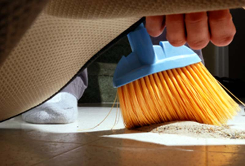 ¿Por qué hay que saber buscar debajo de las alfombras?